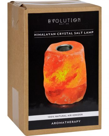 Evolution Salt Crystal Salt Lamp - Aromatherapy - 1 Count